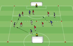 Large Goal Overload
